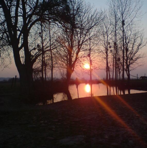 Vue sur un étan au crépuscule
